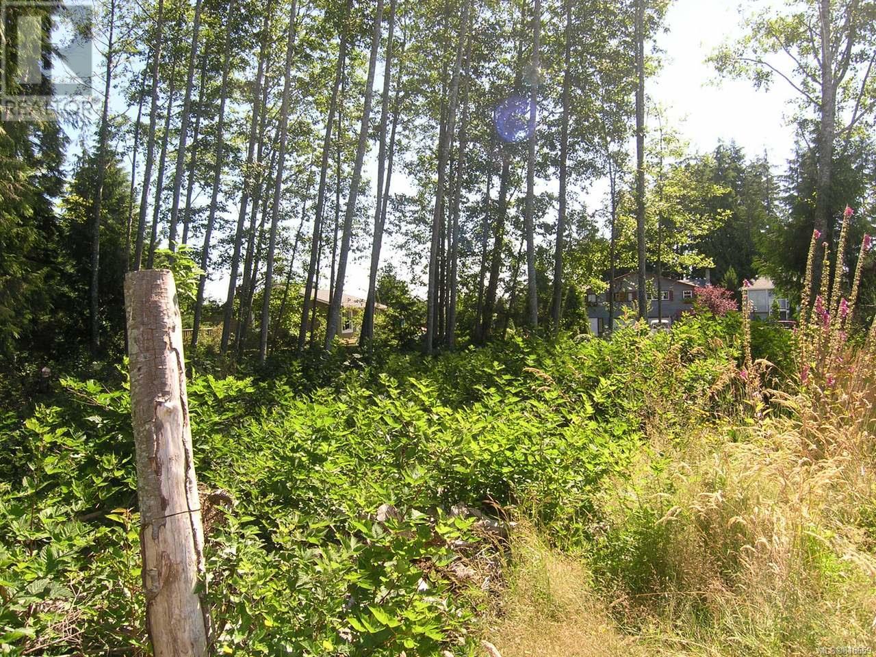 7160 Highland Dr, Port Hardy, British Columbia  V0P 2N0 - Photo 4 - 818659