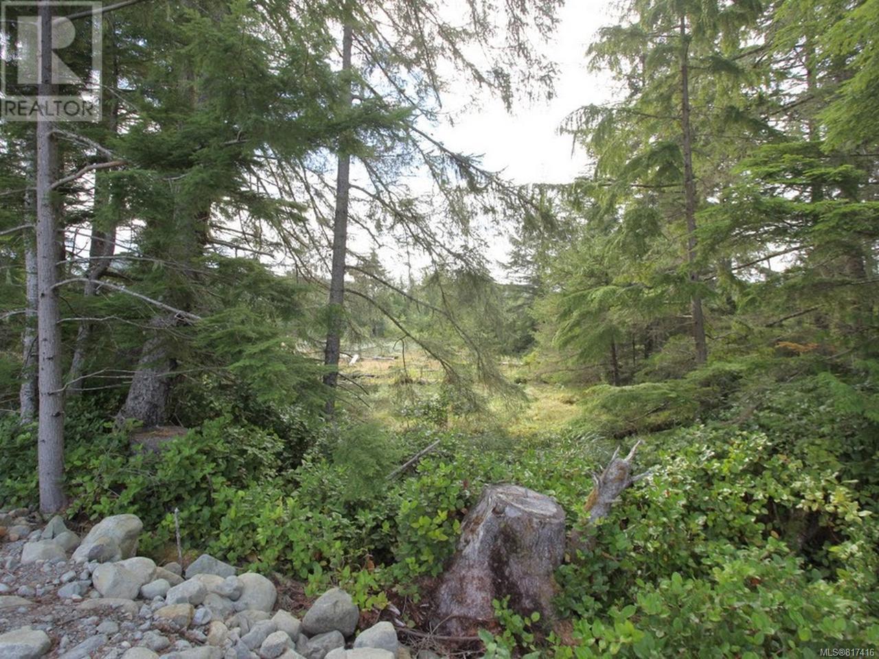Sl F Chatham Channel Island, None, British Columbia  V0P 1L0 - Photo 38 - 817416